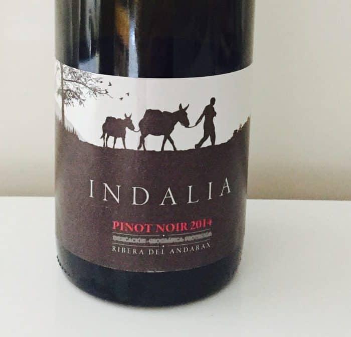 Wappy wijnen: Pagos de Indalia Pinot Noir uit Spanje
