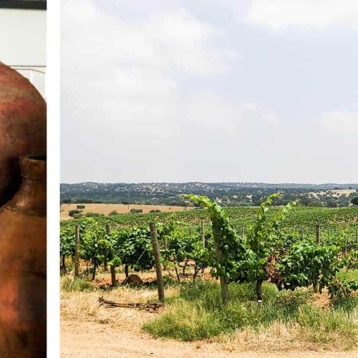 De schat van de Alentejo: Vinho de Talha – amforawijn
