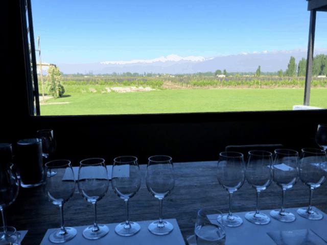 wijnreis in Mendoza