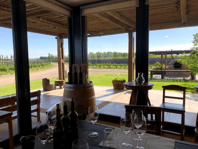 Wijnreis door Mendoza